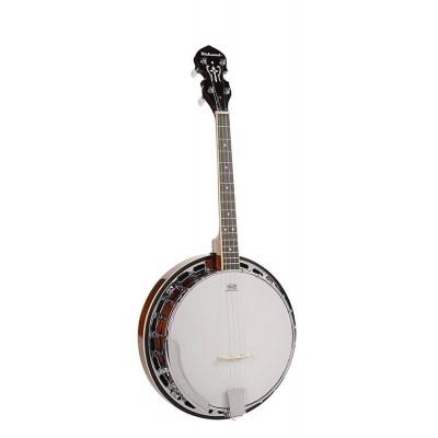 Банджо RICHWOOD RMB-604-SS