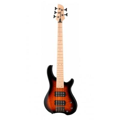 Бас-гитара Fernandes Tremor 5X TS (T5X08)