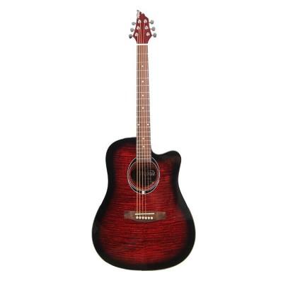 Акустическая гитара FLYCAT C100 TRD